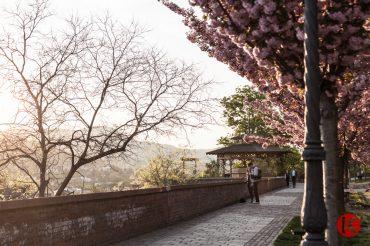 A tavaszi Buda